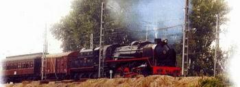 Tren de la Fresa or Strawberry Train