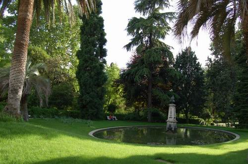 The royal botanical garden madrid real jard n bot nico for Jardin botanico madrid metro